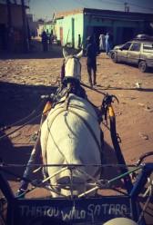 #Off2Africa Jour 18 Nouakchott Mauritanie - Saint-Louis Sénégal