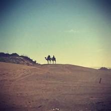 #Off2Africa Jour 6 Essaouira Maroc