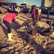 #Off2Africa Jour 17 Nouakchott Mauritanie