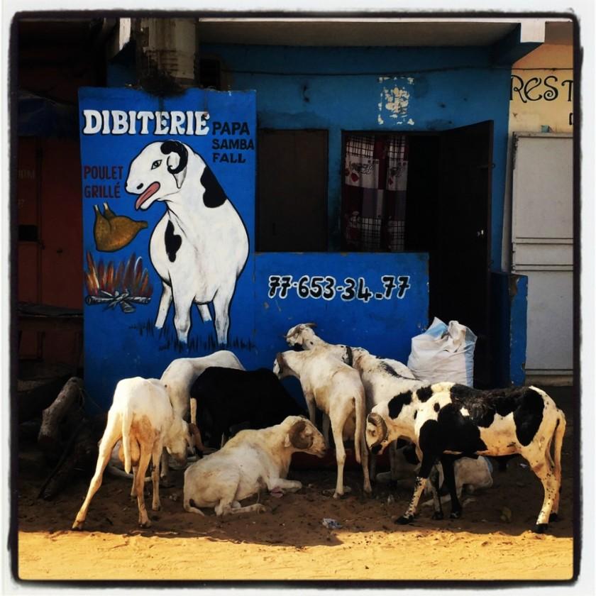 #Off2Africa Jour 40 Dakar Sénégal