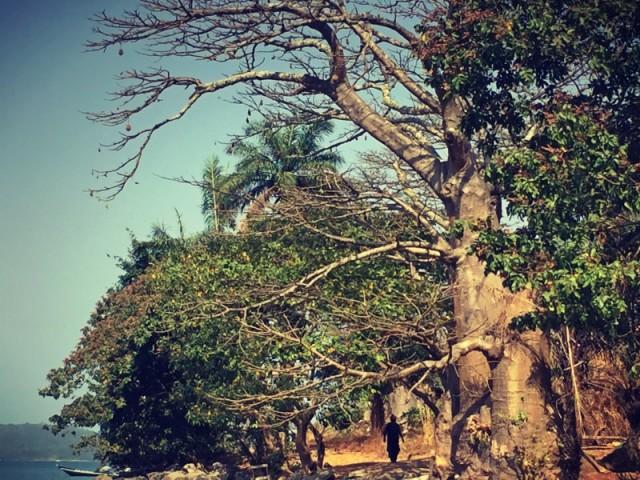#Off2Africa Jour 63 Îles de Loos Guinée